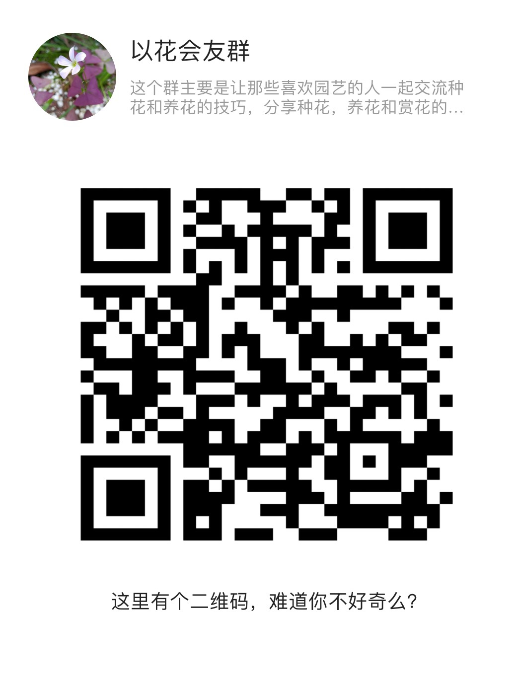 front1_0_Fnon5iXm_MAcaXw9rV_MnA0lTKCG.1624716496.jpg